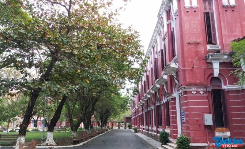 Khuôn viên trường rất rộng và thích hợp cho những ai thích đi dạo từ từ mà ngắm từng ngóc ngách của trường. Giữa những tán cây và bãi cỏ xanh mướt là những tòa nhà với màu sơn đỏ hồng khiến không gian trở nên hài hòa về màu sắc. Đa số những dãy nhà của trường đều được giữ nguyên kiến trúc Pháp