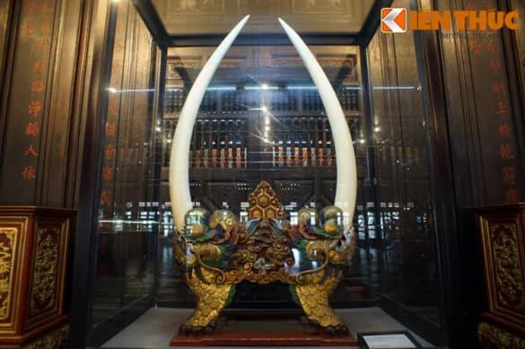 Cặp ngà voi này dài khoảng 1,2m, dáng cân đối với độ cong đồng đều, được cắm vào giá gỗ để sử dụng làm vật trang trí trong cung điện của các vua nhà Nguyễn. Đây là cặp ngà voi cổ lớn nhất nhì Việt Nam.
