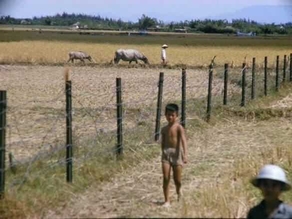 Rào gai giăng trên cánh đồng để khoanh vùng bảo vệ quân sự.