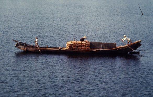 Thuyền chở củi trên sông Hương.