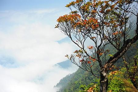 """Bạch Mã – """"Ngọn núi ảo ảnh"""" 145"""