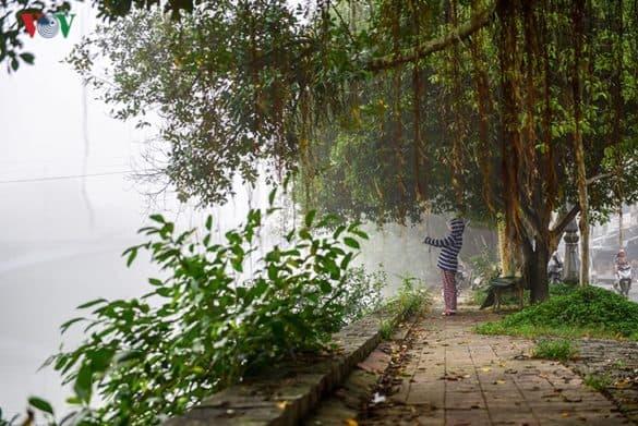 Bình  yên sớm mờ sương ven sông.