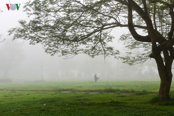 Vào những buổi sáng sớm, khi cả thành phố còn đang ngái ngủ, những con đường nhỏ xứ Huế ngập tràn trong màn sương mờ ảo, nhẹ nhàng dung dị lạ thường.
