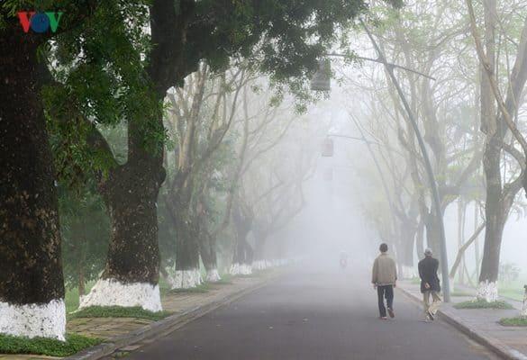 """""""Đường phượng bay mù xa lối về..."""" , mùa sương ở Huế diễn tả hết những lời ca bất hủ của cố nhạc sỹ Trịnh Công Sơn."""