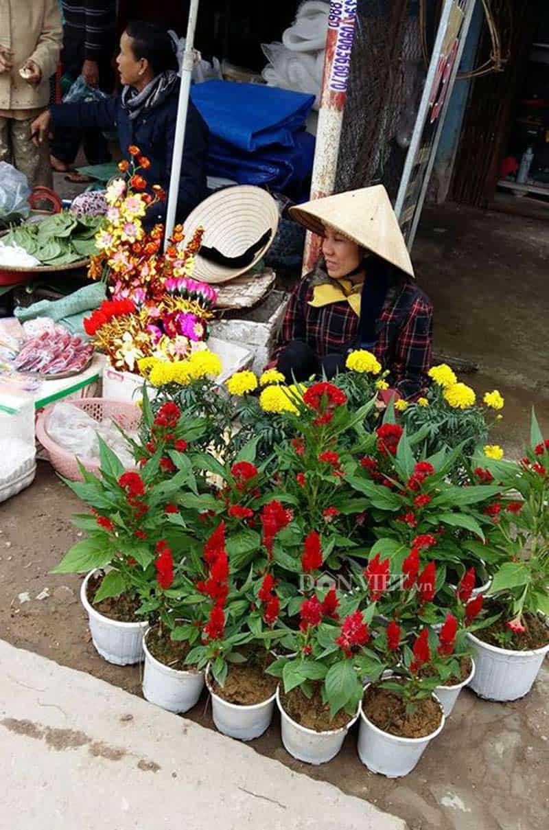 Thân thương chợ quê Hương Toàn Huế 123
