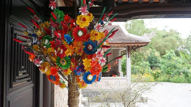 hoa giay hue