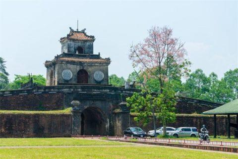 Hoa ngô đồng ở cửa thành Huế