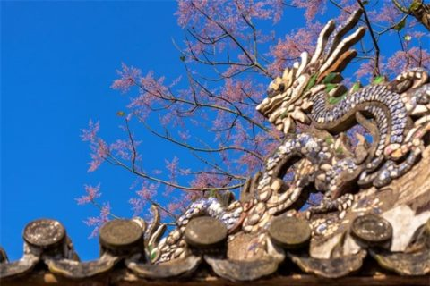 Nền hoa tô thêm vẻ đẹp cung đình sang trọng của các cung điện trong Đại Nội Huế
