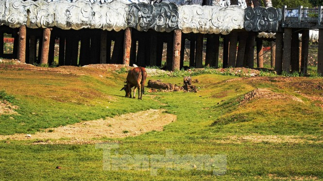 Công viên nước 'kinh dị' tại Huế từng lên báo Mỹ lại khô kiệt khác thường 208
