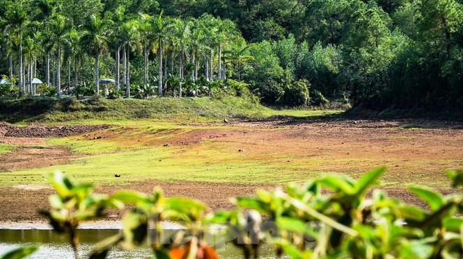 Công viên nước 'kinh dị' tại Huế từng lên báo Mỹ lại khô kiệt khác thường 220