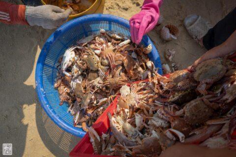Phú Hải - Phú Vang - Thừa Thiên Huế quê tôi 201