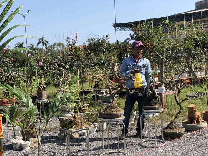 Chợ hoa Tết xứ Huế 'nóng lòng' chờ khách mua 164